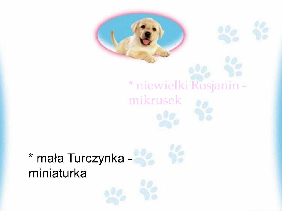 * niewielki Rosjanin - mikrusek * mała Turczynka - miniaturka