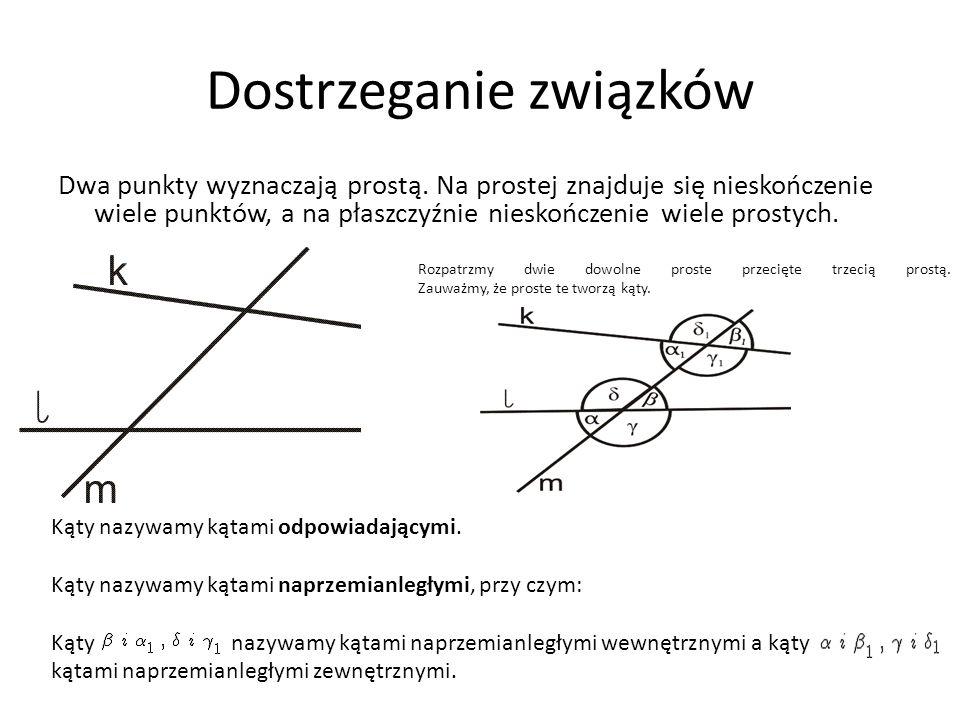 Dostrzeganie związków Dwa punkty wyznaczają prostą. Na prostej znajduje się nieskończenie wiele punktów, a na płaszczyźnie nieskończenie wiele prostyc