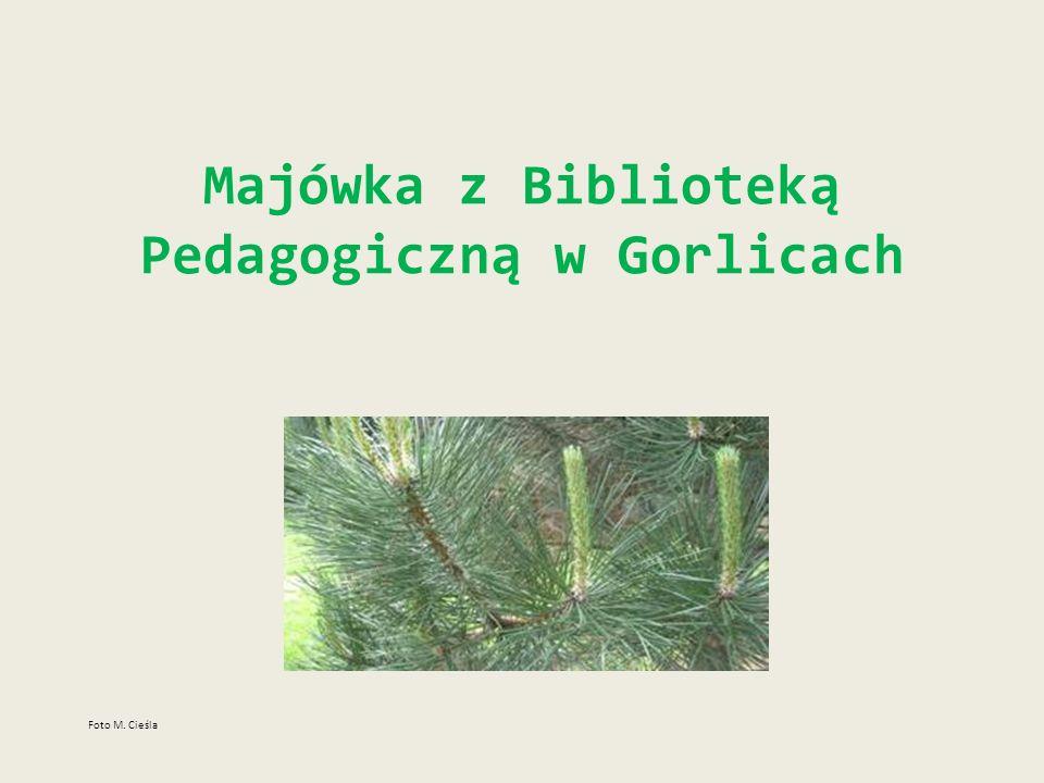 Majówka z Biblioteką Pedagogiczną w Gorlicach Foto M. Cieśla