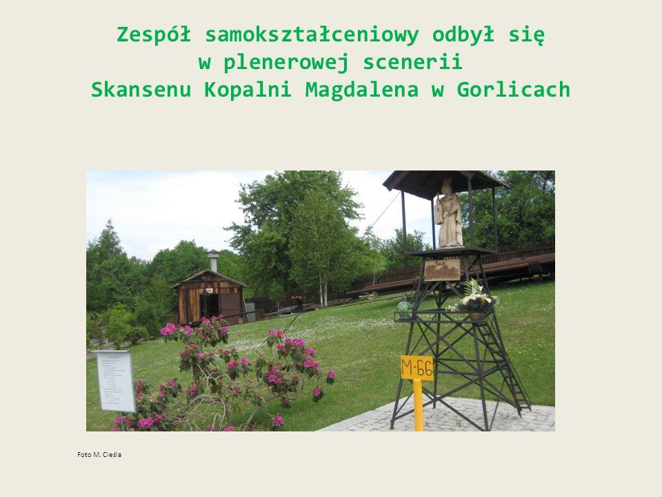 Zespół samokształceniowy odbył się w plenerowej scenerii Skansenu Kopalni Magdalena w Gorlicach Foto M. Cieśla