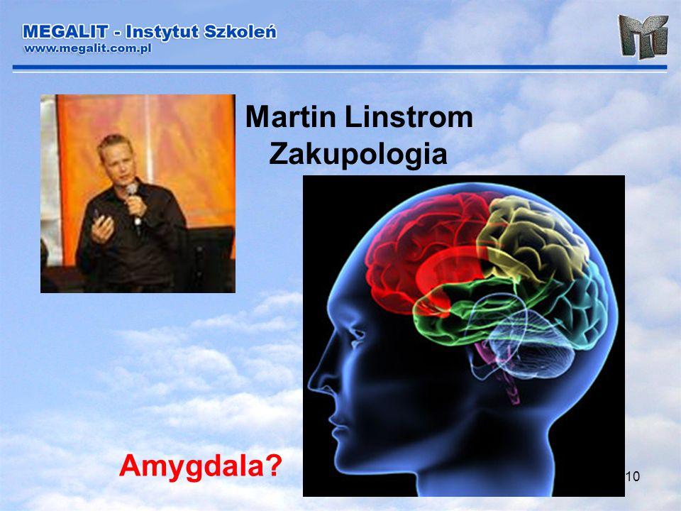 10 Martin Linstrom Zakupologia Amygdala?