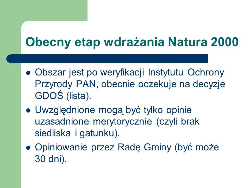 Obecny etap wdrażania Natura 2000 Obszar jest po weryfikacji Instytutu Ochrony Przyrody PAN, obecnie oczekuje na decyzje GDOŚ (lista). Uwzględnione mo