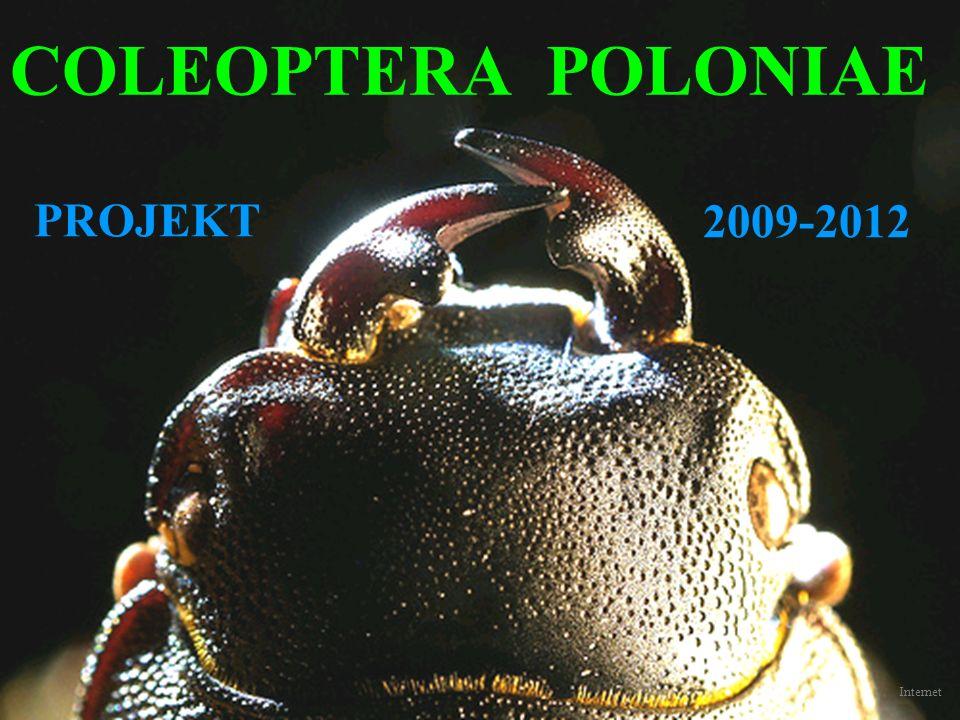 COLEOPTERA POLONIAE PROJEKT 2009-2012 Internet