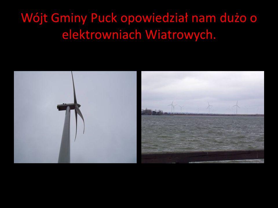 W Pucku inwestuje się w odnawialne źródła energii.