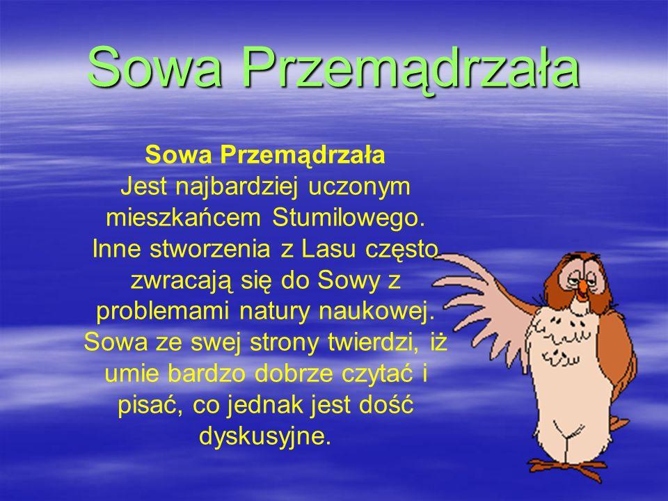 Sowa Przemądrzała Jest najbardziej uczonym mieszkańcem Stumilowego. Inne stworzenia z Lasu często zwracają się do Sowy z problemami natury naukowej. S