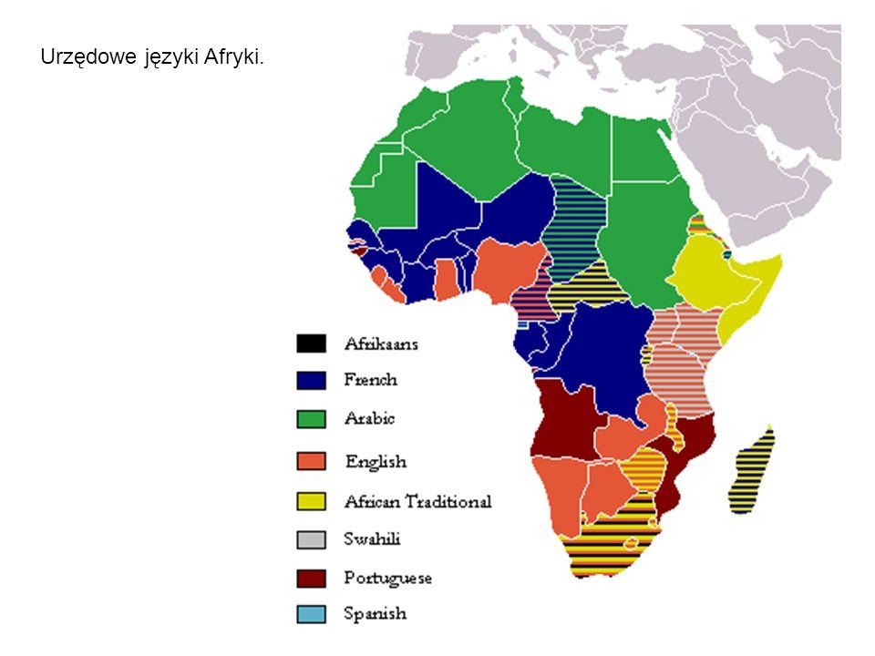 Języki afroazjatyckie (dawniej zwane rodziną semito-chamicką lub chamito- semicką) – wielka rodzina języków, zajmująca olbrzymie obszary od afrykańskich wybrzeży Atlantyku z językami hausa, arabskim i berberyjskimi na zachodzie aż po Róg Afryki (języki kuszyckie) i Bliski Wschód z językami hebrajskim i arabskim na wschodzie.