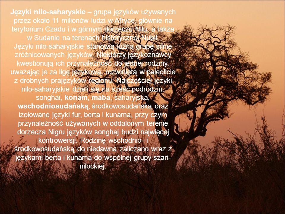 języki nilo-saharyjskie furfur (wraz z językiem amdang, 1 mln) języki songhajjęzyki songhaj (2,5 mln) kaado dżerma dendi tadaksahak języki konamjęzyki konam (komuz) gumuz uduk kwama komo gule języki maba mabamaba (właściwy) runga mimi języki saharyjskie kanurikanuri (5 mln) tubutubu (350 tys.) kanembu szillukszilluk (300 tys.) pokotpokot (200 tys.) języki środkowosudańskie lugbara mangbetumangbetu (700 tys.) lendulendu (500 tys.) teda daza zaghawa berti języki szari-nilockie bertaberta (ok.