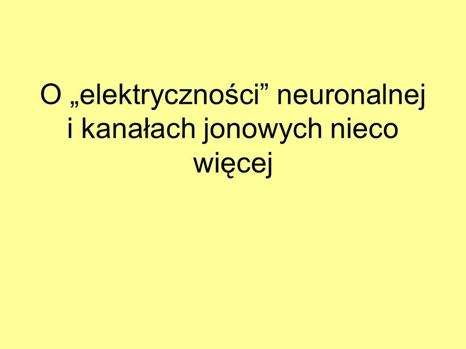 O elektryczności neuronalnej i kanałach jonowych nieco więcej