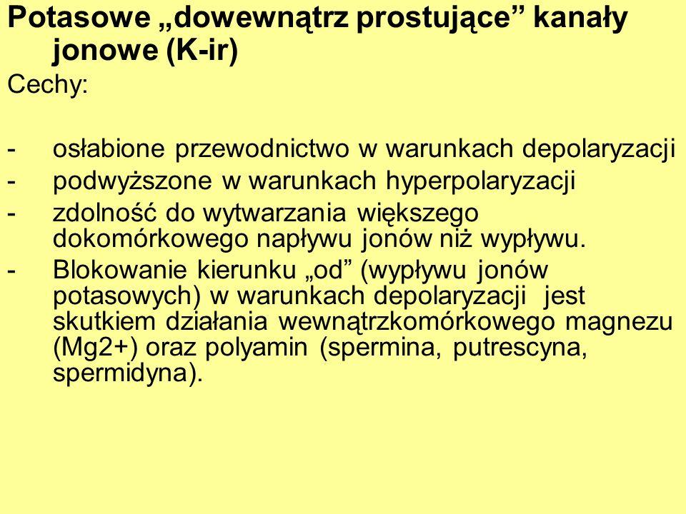 Potasowe dowewnątrz prostujące kanały jonowe (K-ir) Cechy: -osłabione przewodnictwo w warunkach depolaryzacji -podwyższone w warunkach hyperpolaryzacj