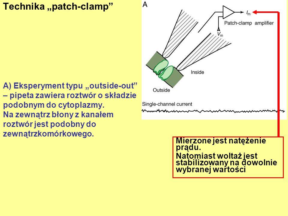 A) Eksperyment typu outside-out – pipeta zawiera roztwór o składzie podobnym do cytoplazmy. Na zewnątrz błony z kanałem roztwór jest podobny do zewnąt