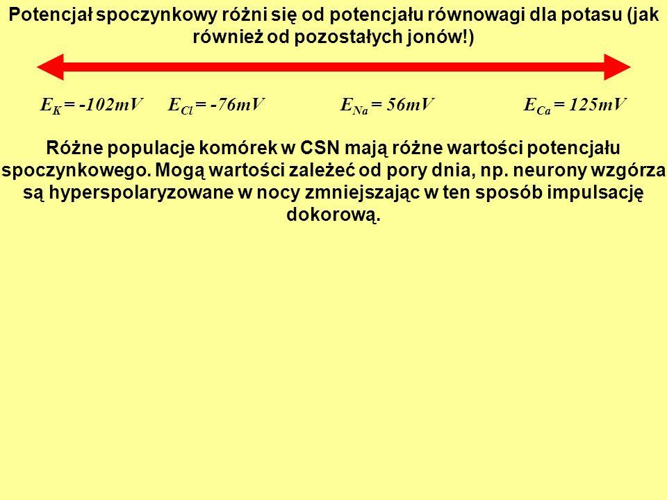 3.10 Passive current flow in an axon. (Part 1)