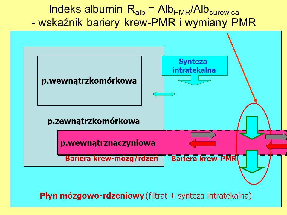 Płyn mózgowo-rdzeniowy (filtrat + synteza intratekalna) p.zewnątrzkomórkowa p.wewnątrzkomórkowa p.wewnątrznaczyniowa Bariera krew-mózg/rdzeń Bariera k