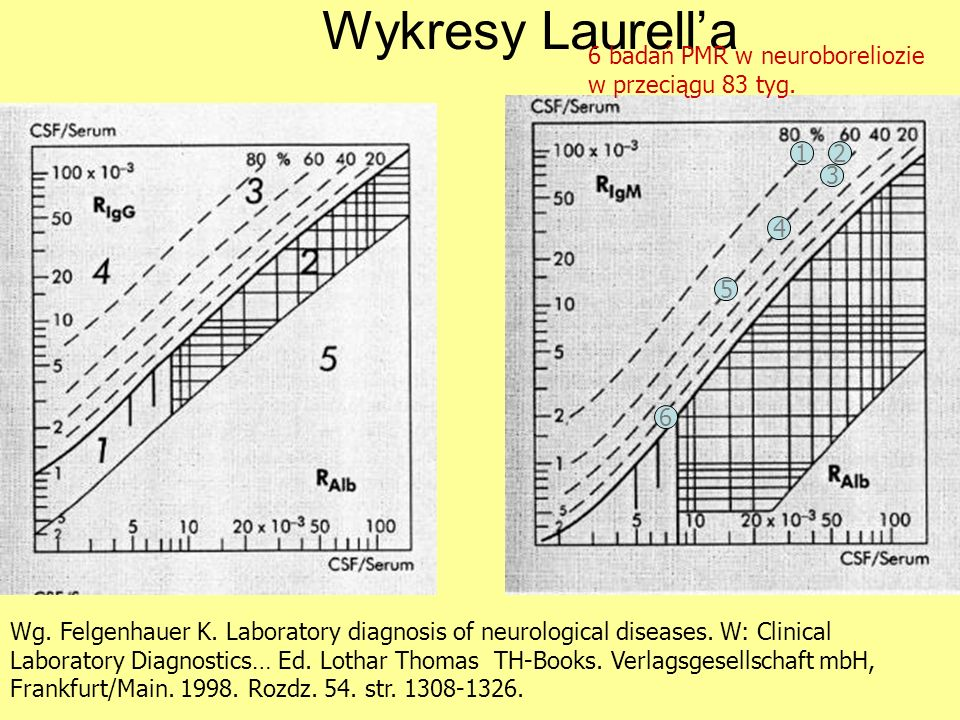 Wykresy Laurella Wg. Felgenhauer K. Laboratory diagnosis of neurological diseases. W: Clinical Laboratory Diagnostics… Ed. Lothar Thomas TH-Books. Ver