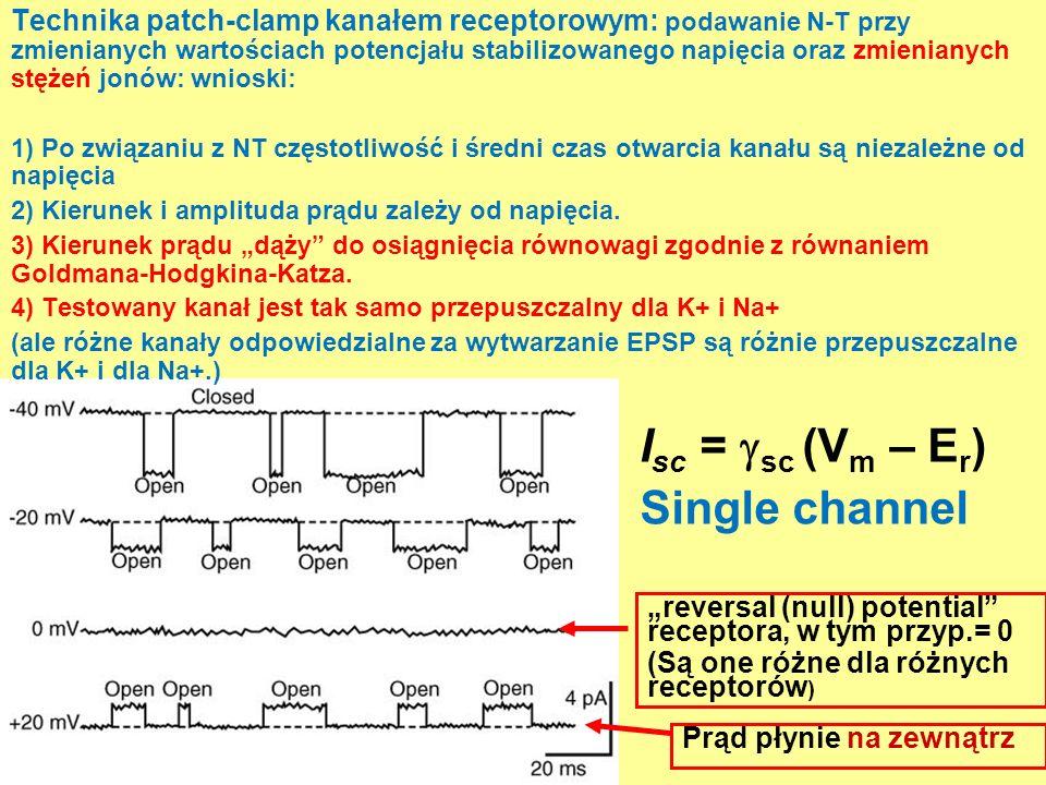 Technika patch-clamp kanałem receptorowym: podawanie N-T przy zmienianych wartościach potencjału stabilizowanego napięcia oraz zmienianych stężeń jonó