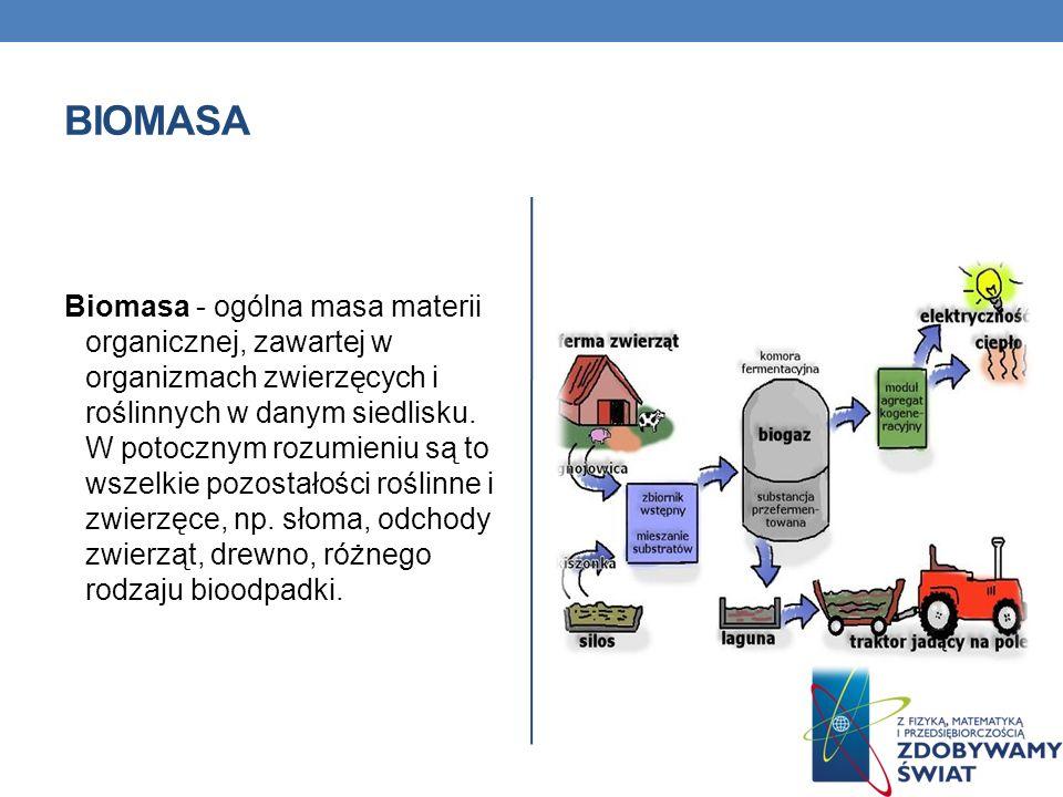 BIOMASA Biomasa - ogólna masa materii organicznej, zawartej w organizmach zwierzęcych i roślinnych w danym siedlisku. W potocznym rozumieniu są to wsz