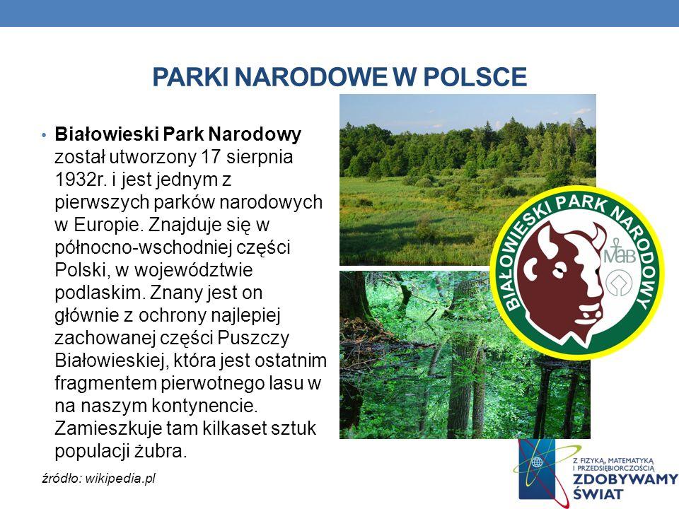 PARKI NARODOWE W POLSCE Białowieski Park Narodowy został utworzony 17 sierpnia 1932r. i jest jednym z pierwszych parków narodowych w Europie. Znajduje