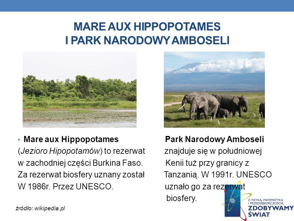 MARE AUX HIPPOPOTAMES I PARK NARODOWY AMBOSELI Mare aux Hippopotames Park Narodowy Amboseli (Jezioro Hipopotamów) to rezerwat znajduje się w południow
