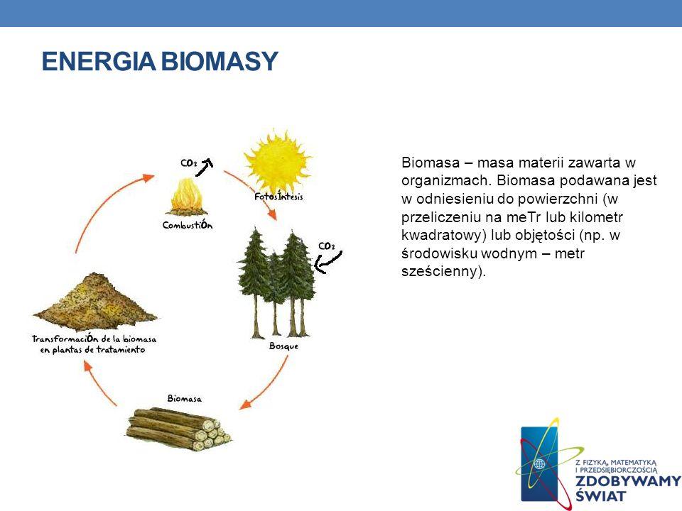ENERGIA BIOMASY Biomasa – masa materii zawarta w organizmach. Biomasa podawana jest w odniesieniu do powierzchni (w przeliczeniu na meTr lub kilometr