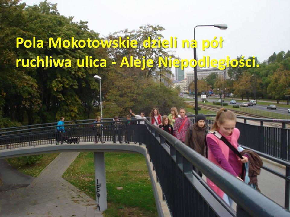 Pola Mokotowskie dzieli na pół ruchliwa ulica - Aleje Niepodległości.