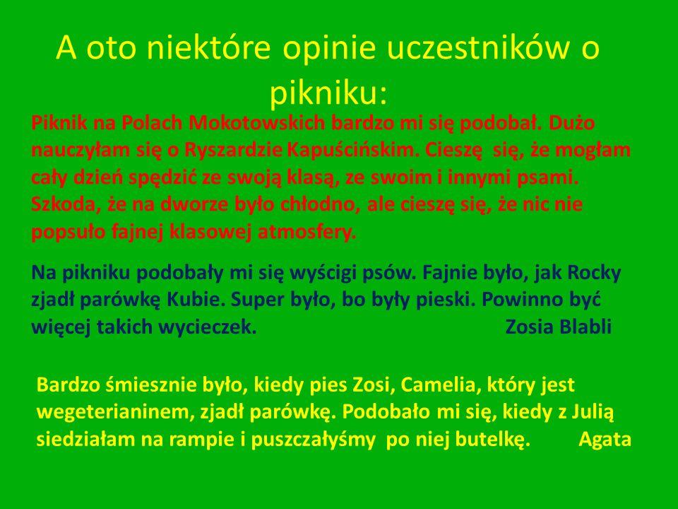 A oto niektóre opinie uczestników o pikniku: Piknik na Polach Mokotowskich bardzo mi się podobał.
