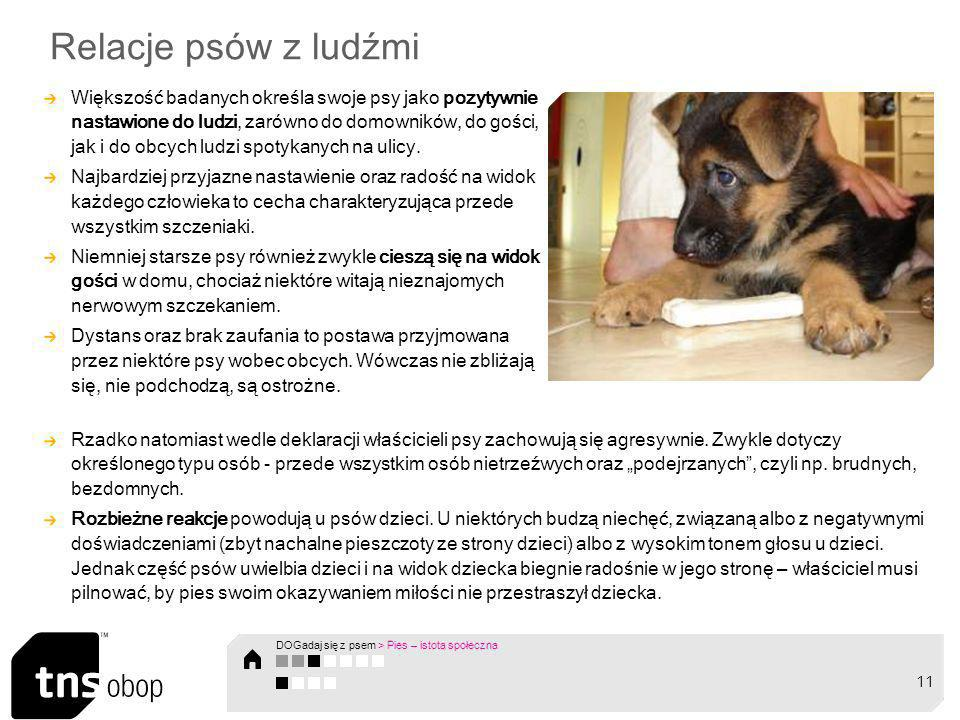 Relacje ps ó w z ludźmi Większość badanych określa swoje psy jako pozytywnie nastawione do ludzi, zar ó wno do domownik ó w, do gości, jak i do obcych