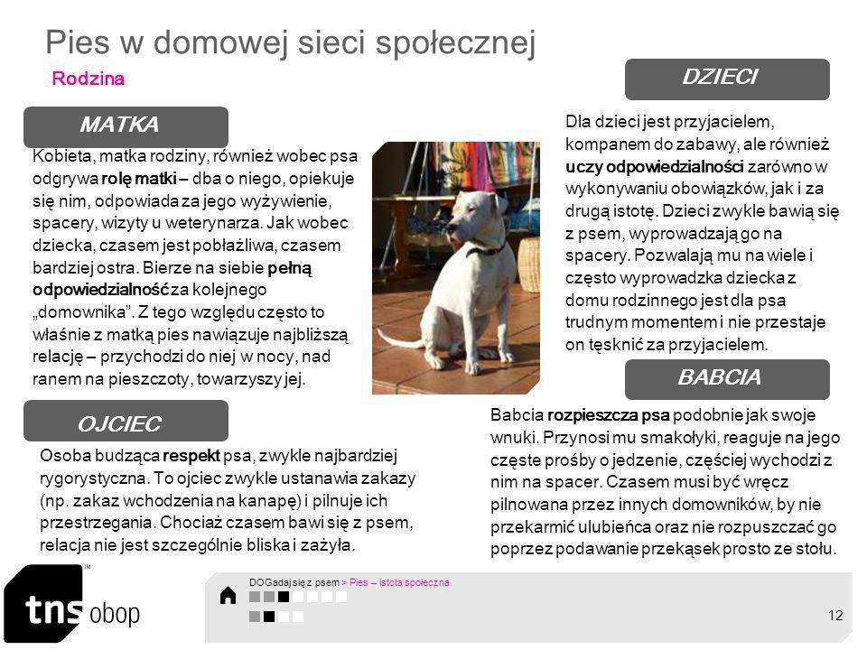 Pies w domowej sieci społecznej Rodzina OJCIEC Osoba budząca respekt psa, zwykle najbardziej rygorystyczna. To ojciec zwykle ustanawia zakazy (np. zak