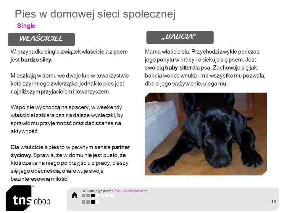 Pies w domowej sieci społecznej Single WŁAŚCICIEL BABCIA W przypadku singla związek właściciela z psem jest bardzo silny. Mieszkają w domu we dwoje lu