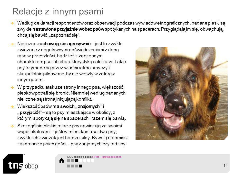 Relacje z innym psami Według deklaracji respondent ó w oraz obserwacji podczas wywiad ó w etnograficznych, badane pieski są zwykle nastawione przyjaźn