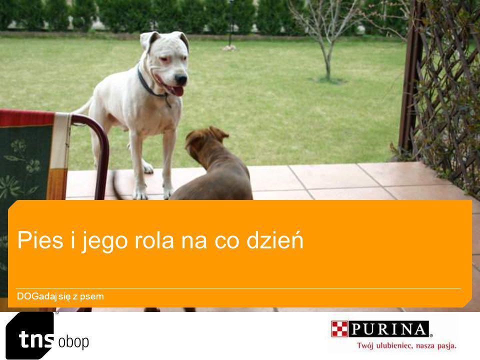 Rola psa w domu Pies w opinii respondent ó w to członek rodziny, przyjaciel, kolejny domownik.