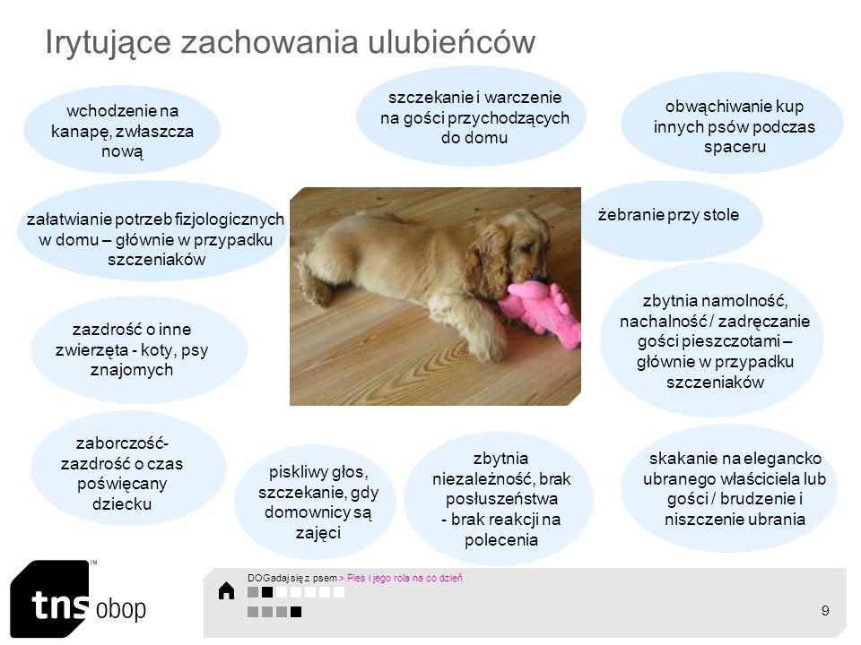 Pies – istota społeczna DOGadaj się z psem