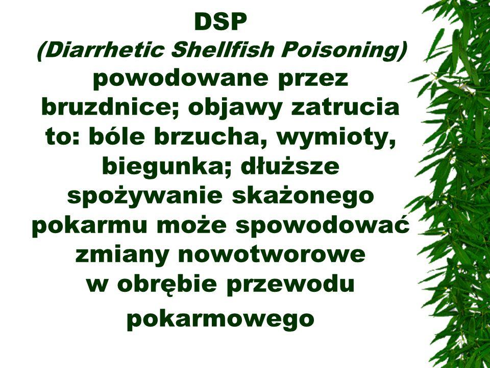 DSP (Diarrhetic Shellfish Poisoning) powodowane przez bruzdnice; objawy zatrucia to: bóle brzucha, wymioty, biegunka; dłuższe spożywanie skażonego pok