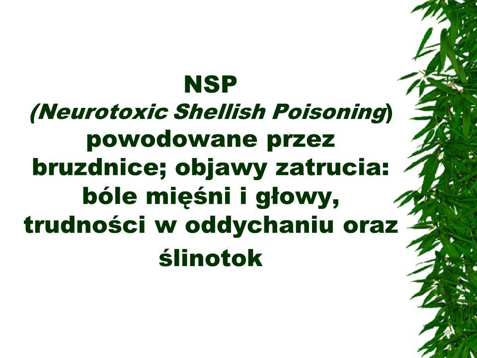 NSP (Neurotoxic Shellish Poisoning) powodowane przez bruzdnice; objawy zatrucia: bóle mięśni i głowy, trudności w oddychaniu oraz ślinotok