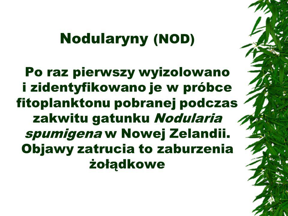 Nodularyny (NOD) Po raz pierwszy wyizolowano i zidentyfikowano je w próbce fitoplanktonu pobranej podczas zakwitu gatunku Nodularia spumigena w Nowej