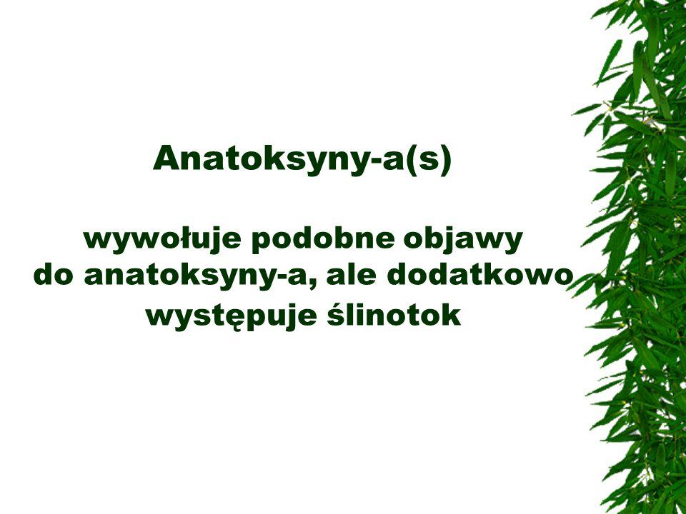Anatoksyny-a(s) wywołuje podobne objawy do anatoksyny-a, ale dodatkowo występuje ślinotok