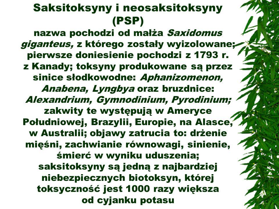 Saksitoksyny i neosaksitoksyny (PSP) nazwa pochodzi od małża Saxidomus giganteus, z którego zostały wyizolowane; pierwsze doniesienie pochodzi z 1793