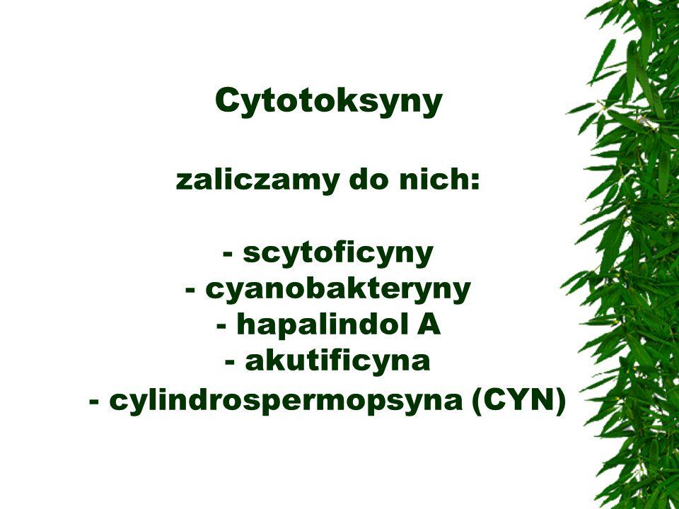 Cytotoksyny zaliczamy do nich: - scytoficyny - cyanobakteryny - hapalindol A - akutificyna - cylindrospermopsyna (CYN)
