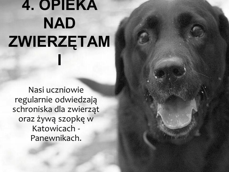 4. OPIEKA NAD ZWIERZĘTAM I Nasi uczniowie regularnie odwiedzają schroniska dla zwierząt oraz żywą szopkę w Katowicach - Panewnikach.