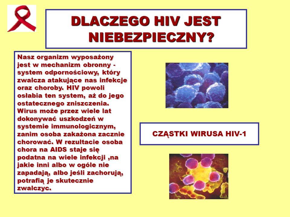 CZĄSTKI WIRUSA HIV-1 DLACZEGO HIV JEST NIEBEZPIECZNY? Nasz organizm wyposażony jest w mechanizm obronny - system odpornościowy, który zwalcza atakując