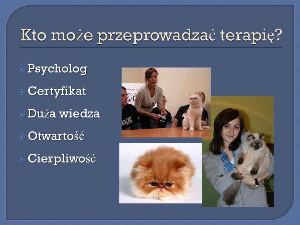 Psycholog Psycholog Certyfikat Certyfikat Du ż a wiedza Du ż a wiedza Otwarto ść Otwarto ść Cierpliwo ść Cierpliwo ść