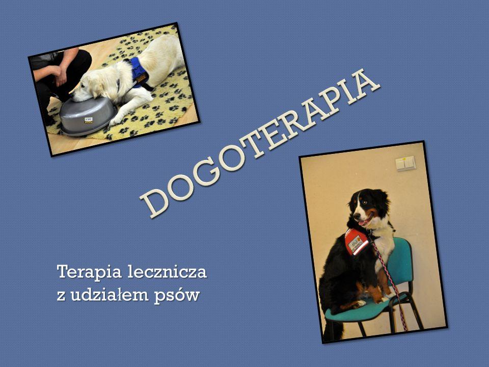 Terapia lecznicza z udzia ł em psów