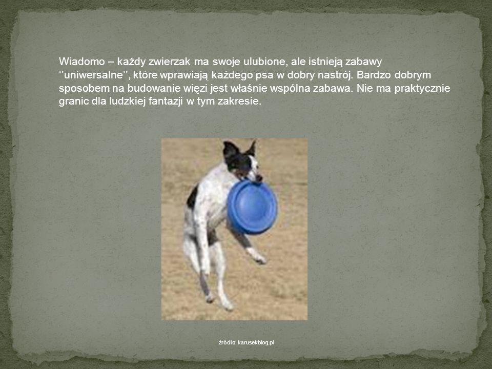 Zabawy z psem Istnieją proste zabawy zręcznościowe, które sprzyjają rozwojowi umysłowemu naszego psa i w które można się z nim bawić zarówno w ogrodzi