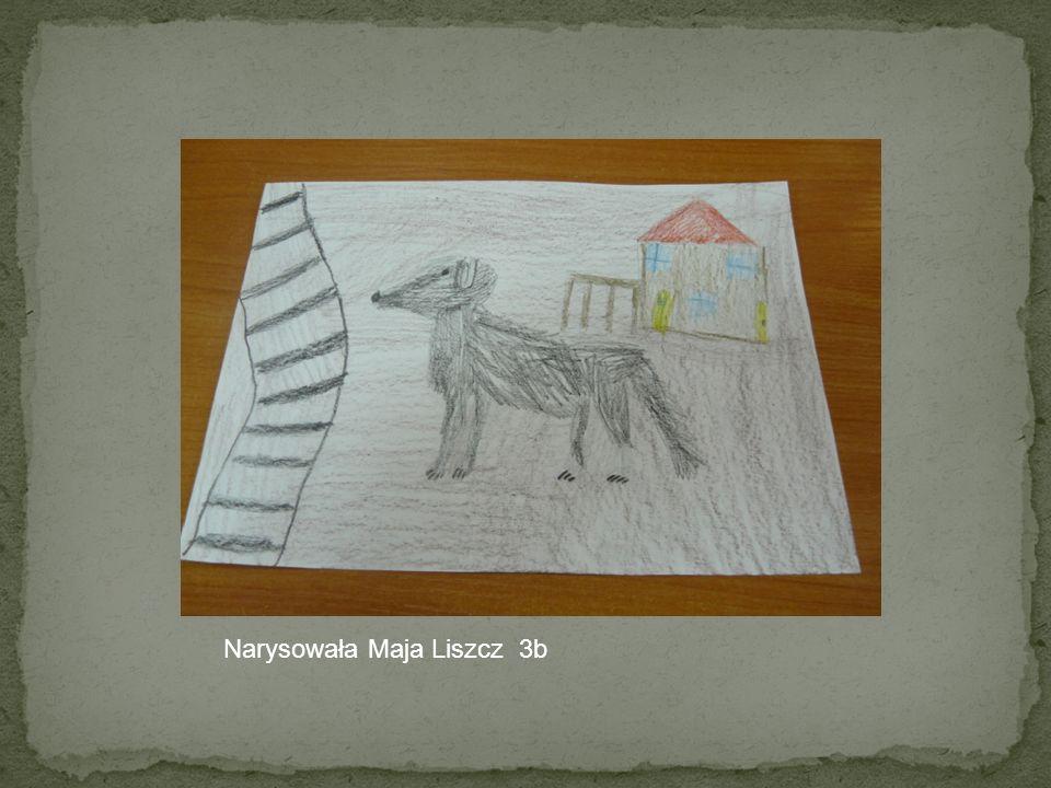 Opis Lampo Gł ó wnym bohaterem lektury pt. O psie kt ó ry jeździł koleją był pies. Nazywał się Lampo. Był on kundlem. Z wyglądu przypominał trochę szp