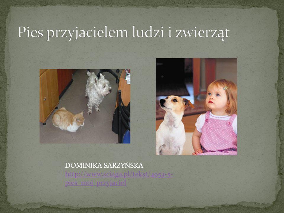 DOMINIKA SARZYŃSKA http://www.sciaga.pl/tekst/4953-5- pies_moj_przyjaciel