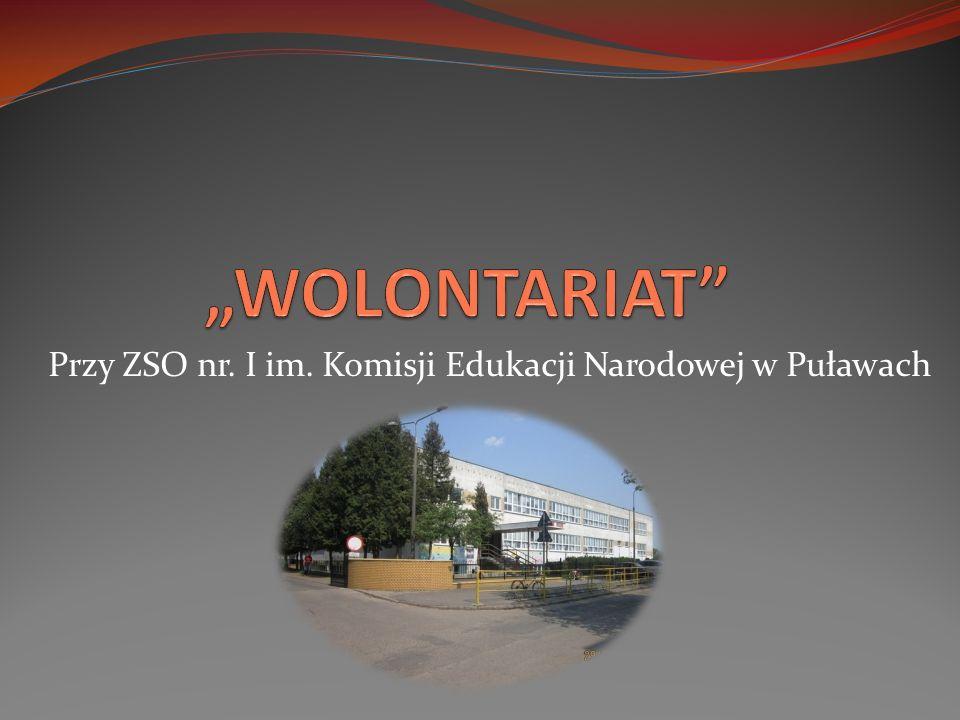 Przy ZSO nr. I im. Komisji Edukacji Narodowej w Puławach