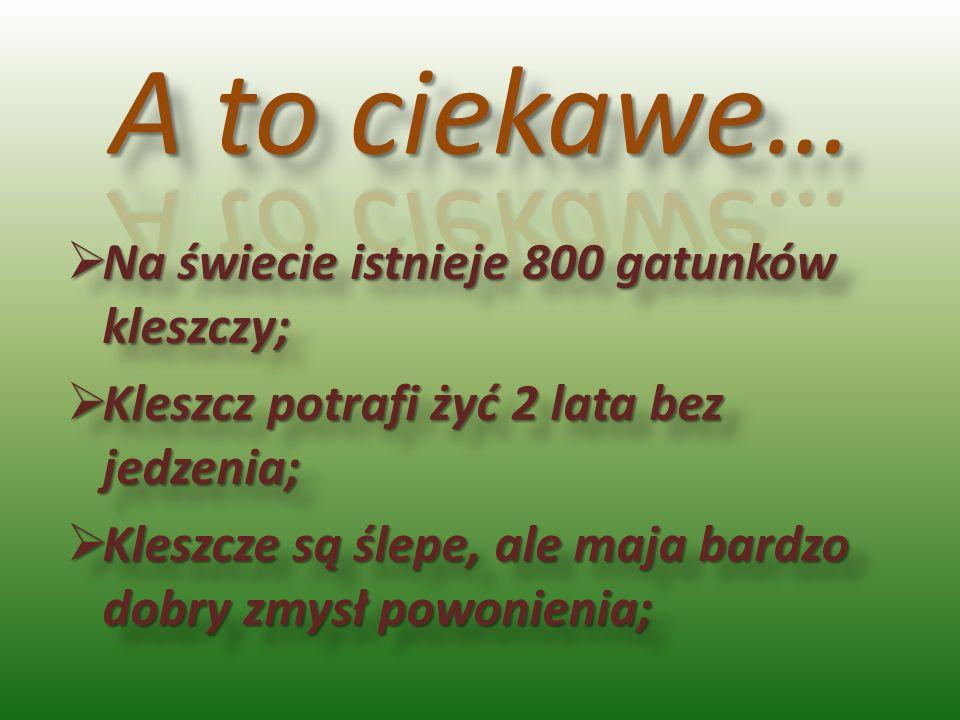 Na świecie istnieje 800 gatunków kleszczy; Na świecie istnieje 800 gatunków kleszczy; Kleszcz potrafi żyć 2 lata bez jedzenia; Kleszcz potrafi żyć 2 l