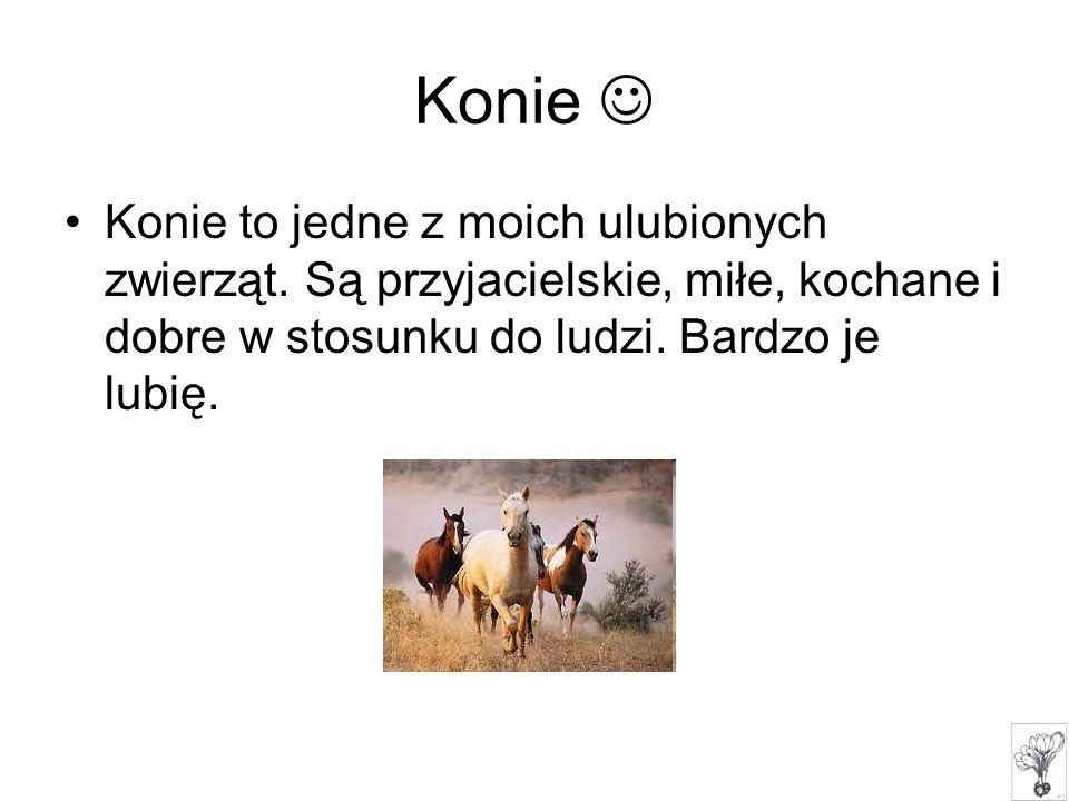 Konie Konie to jedne z moich ulubionych zwierząt. Są przyjacielskie, miłe, kochane i dobre w stosunku do ludzi. Bardzo je lubię.