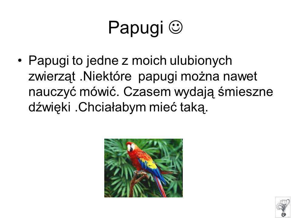 Papugi to jedne z moich ulubionych zwierząt.Niektóre papugi można nawet nauczyć mówić. Czasem wydają śmieszne dźwięki.Chciałabym mieć taką.