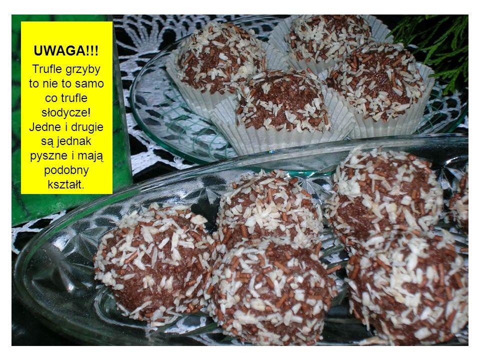 UWAGA!!! Trufle grzyby to nie to samo co trufle słodycze! Jedne i drugie są jednak pyszne i mają podobny kształt.