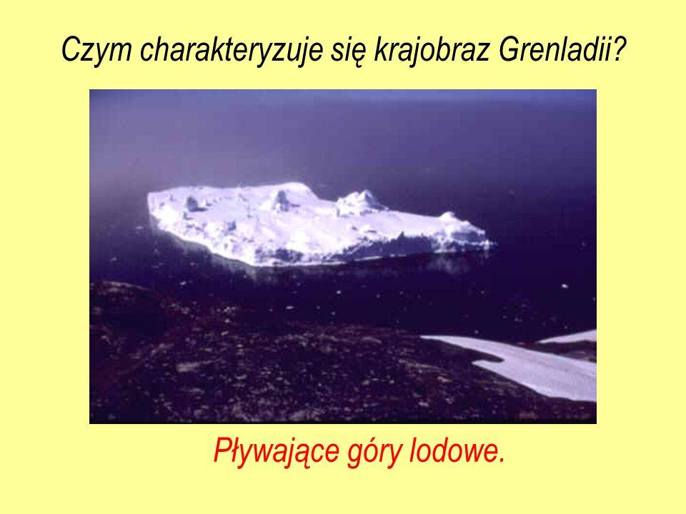 Pływające góry lodowe. Czym charakteryzuje się krajobraz Grenladii?
