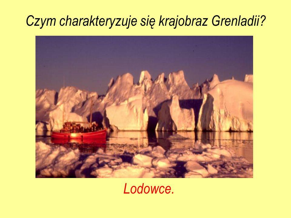 Lodowce. Czym charakteryzuje się krajobraz Grenladii?